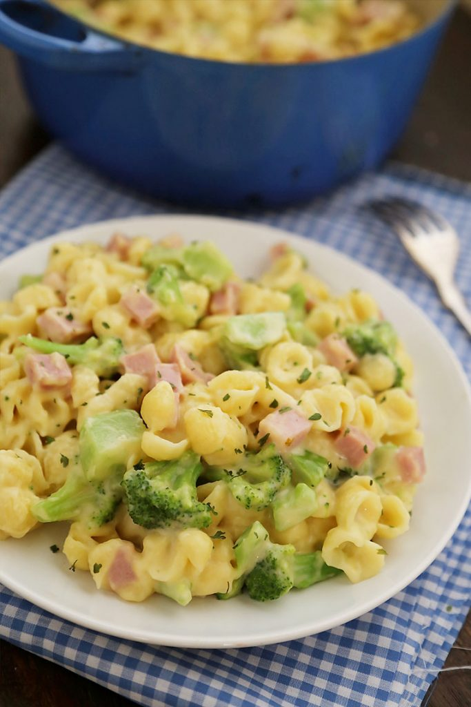 Ham and broccoli shells and cheese