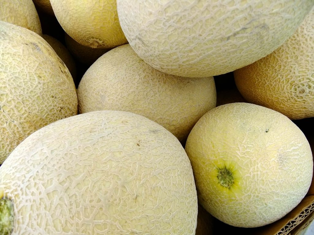 All the produce in season in July_melons