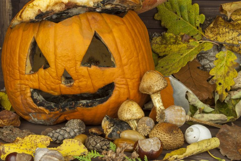 How to make your pumpkin last longer