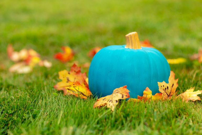 This is what a teal pumpkin on the porch means
