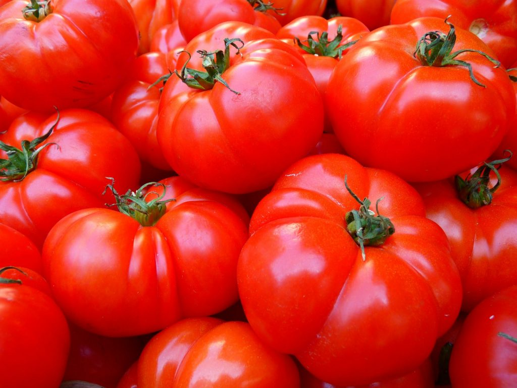 What produce is in season in September?_tomatoes