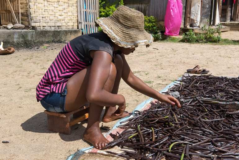 Global vanilla shortage will see pastry, ice cream prices soar by Everybody Craves
